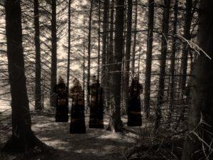 Haunted Forest - häxornas hämnd